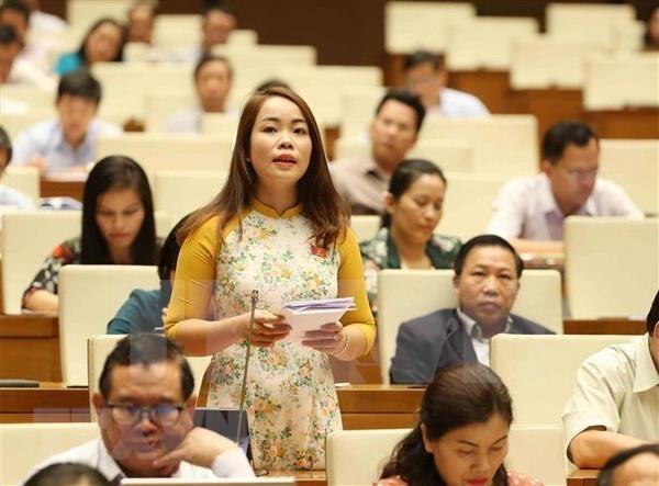 Aprueba Parlamento de Vietnam agenda de supervision para 2020 hinh anh 1