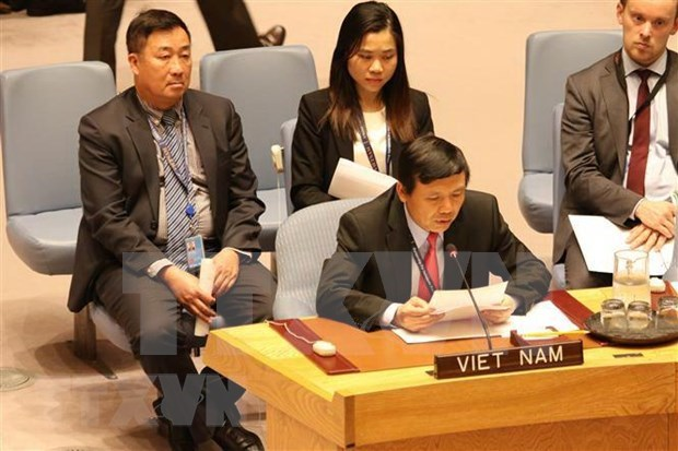 Elogia prensa internacional eleccion de Vietnam al Consejo de Seguridad hinh anh 1
