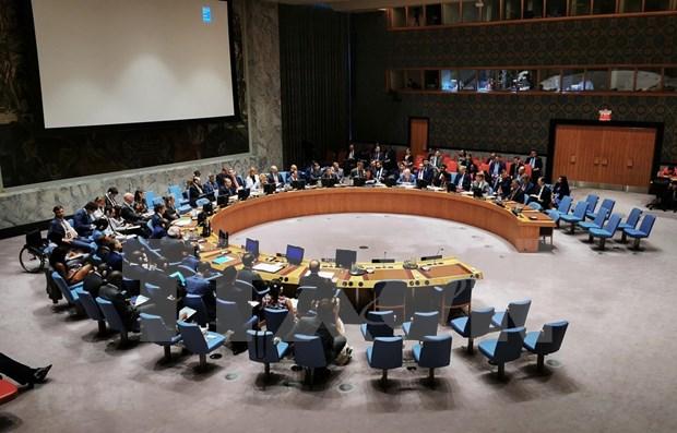 Confian en exito de Vietnam como miembro del Consejo de Seguridad de la ONU hinh anh 1