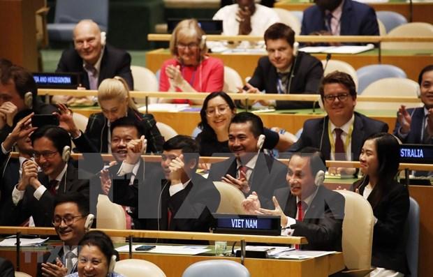 Elogia experto ruso eleccion de Vietnam al Consejo de Seguridad de la ONU hinh anh 1