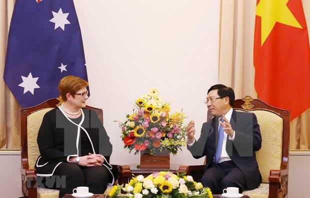Vicepremier vietnamita recibe a canciller de Australia hinh anh 1
