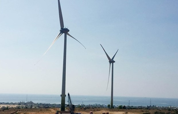 Resaltan potencial de Vietnam para generacion de energia eolica marina hinh anh 1