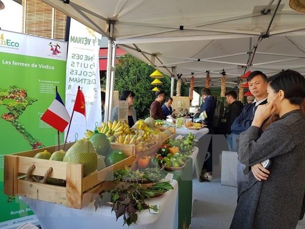 Promovera Vietnam sus productos agricolas en Francia hinh anh 1