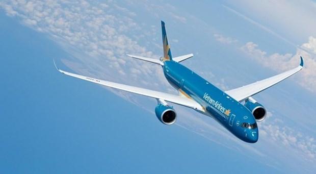 Registra un alto crecimiento el trafico aereo en Vietnam hinh anh 1