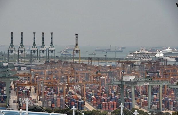 Reportan caida en las exportaciones de Singapur hinh anh 1