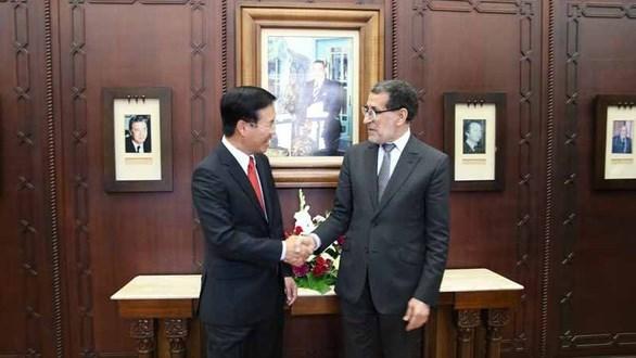 Vietnam y Marruecos coinciden en fomentar cooperacion multifacetica hinh anh 1
