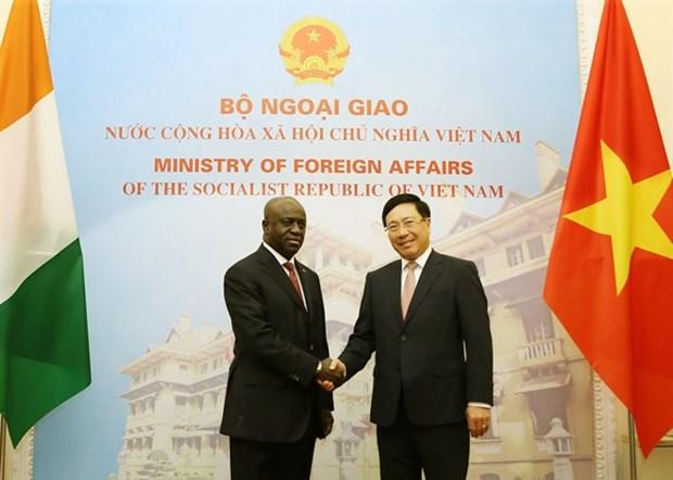 Vietnam y Costa de Marfil robustecen relaciones hinh anh 1