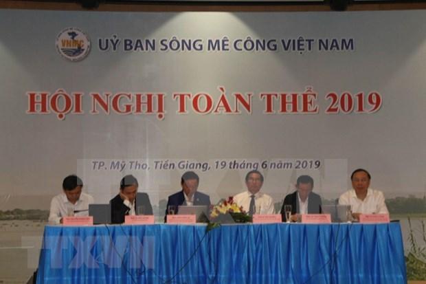 Sesiona en Vietnam Comite del Rio Mekong hinh anh 1