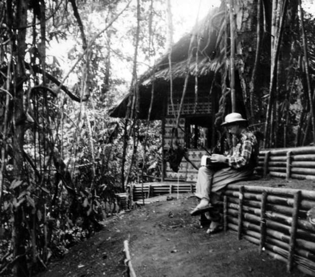 Vietnam en la mirada de un corresponsal de guerra australiano hinh anh 1