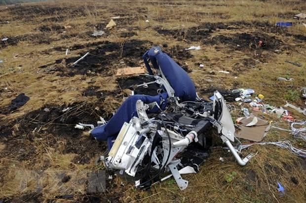 Cuestiona Malasia informe de Equipo Investigacion Internacional sobre accidente del avion MH17 hinh anh 1