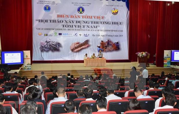 Busca Vietnam crear una marca nacional de camarones hinh anh 1