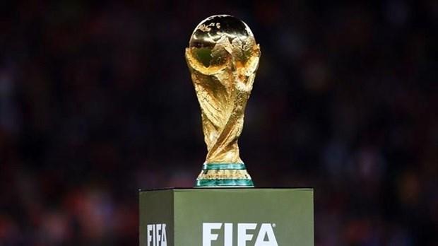 ASEAN estudia posibilidad de postular para la Copa Mundial de 2034 hinh anh 1