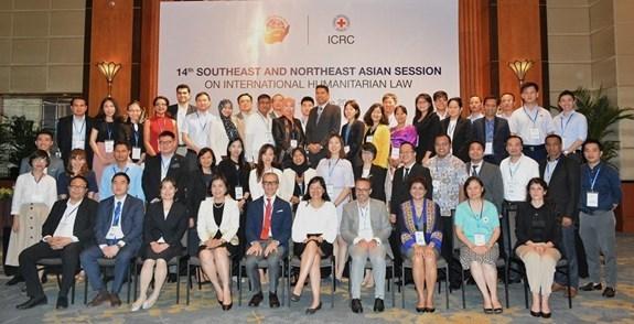 Reafirma Vietnam importancia de la aplicacion del derecho internacional humanitario hinh anh 1