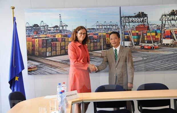 Vietnam y UE firmaran pronto FTA el 30 de junio en Hanoi hinh anh 1