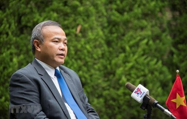 Vietnam participara activamente en Cumbre del G20 en Japon, destaca embajador hinh anh 1
