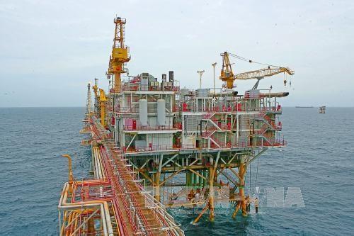 Aumenta Vietnam exportacion de petroleo y gasolina hinh anh 1