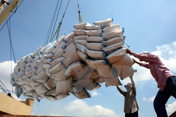 Exporta Vietnam mas de dos millones de toneladas de arroz en el primer semestre de 2019 hinh anh 1