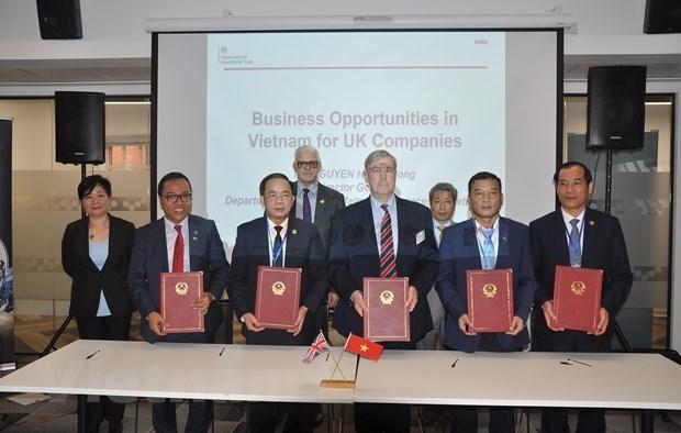 Buscan localidades vietnamitas atraer inversiones de Reino Unido hinh anh 1