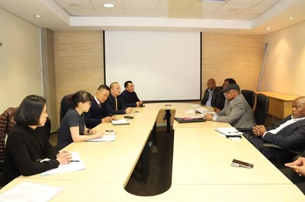 Valoran Vietnam y Sudafrica posible Acuerdo de Libre Comercio bilateral hinh anh 1
