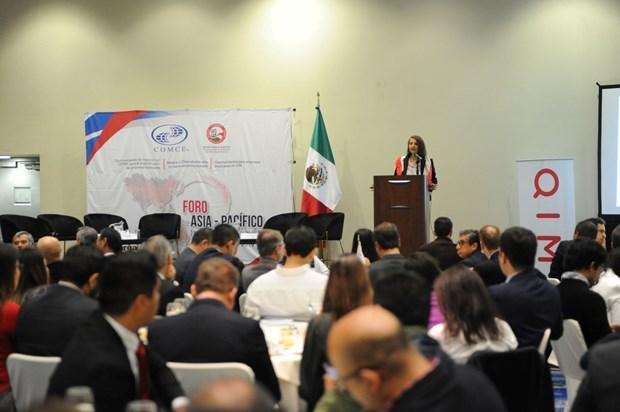 Reafirma Mexico importancia del Acuerdo Transpacifico para la diversificacion comercial hinh anh 1