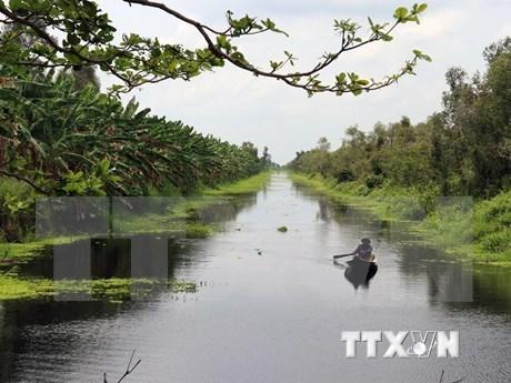 Recibe Vietnam casi ocho millones 500 mil turistas extranjeros en la primera mitad de 2019 hinh anh 1