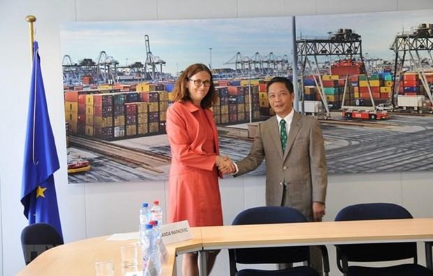 Abre Tratado de Libre Comercio oportunidades para mercancias vietnamita en el mercado europeo hinh anh 1