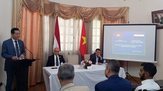 Promueven Vietnam y Egipto cooperacion en turismo hinh anh 1