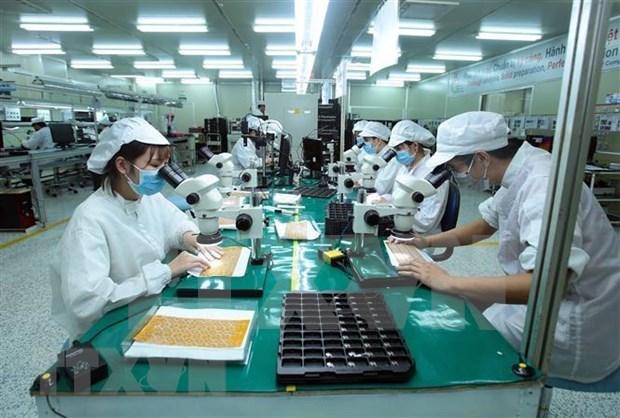 Hitos en las negociaciones para la firma del Tratado de Libre Comercio entre Vietnam y la UE hinh anh 1