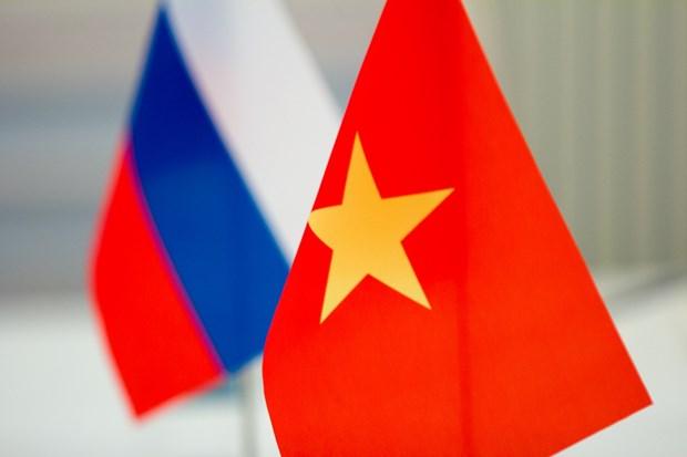 Refuerzan Vietnam y Rusia relaciones de amistad y cooperacion hinh anh 1