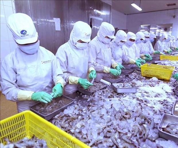 Cooperan paises miembros de ASEAN para desarrollar la industria pesquera hinh anh 1