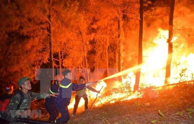 Se enfrasca Vietnam en controlar grave incendio forestal en provincia central hinh anh 1