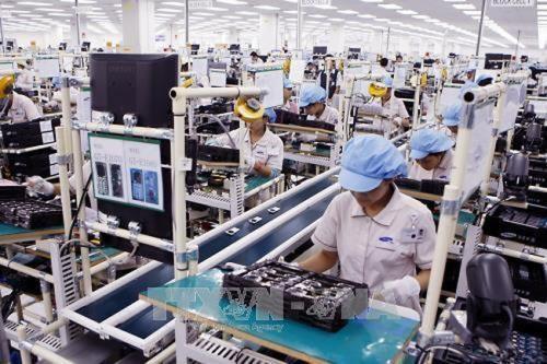 Establecen en Vietnam unas 67 mil nuevas empresas en primer semestre de 2019 hinh anh 1