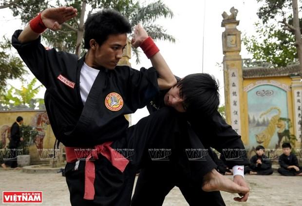 La quintaesencia de las artes marciales tradicionales de Vietnam hinh anh 2