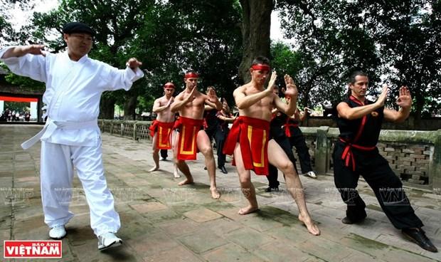 La quintaesencia de las artes marciales tradicionales de Vietnam hinh anh 1