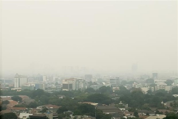 Alertan en capital de Indonesia sobre contaminacion del aire hinh anh 1
