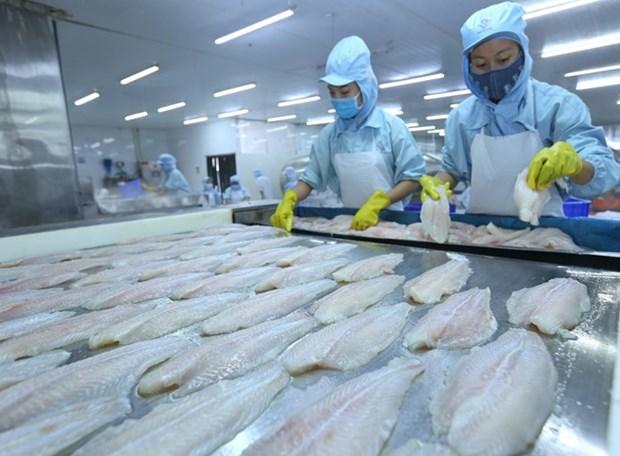 Vietnam podra ingresar 10 mil millones de dolares de sus exportaciones acuicolas en 2019 hinh anh 1