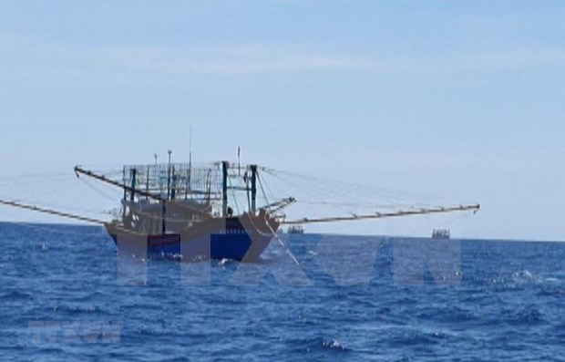 Vietnam aplica medidas de proteccion ciudadana a pescadores detenidos en Malasia hinh anh 1