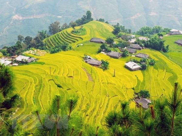Aumenta numero de turistas a provincia vietnamita de Lao Cai hinh anh 1