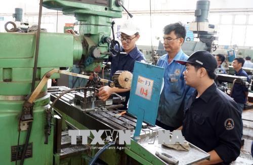 Registra mercado laboral de Vietnam cifras positivas en primera mitad de 2019 hinh anh 1