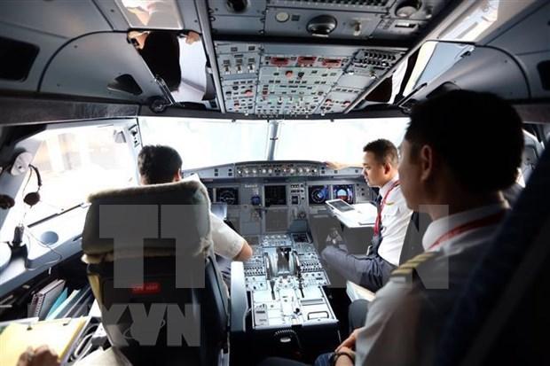 Cooperan grupo vietnamita Vingroup y empresa canadiense para formacion de pilotos hinh anh 1