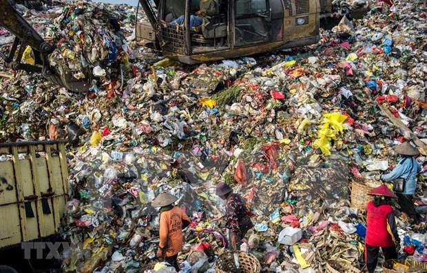 Devuelve Indonesia a Australia mas de 200 toneladas de basura hinh anh 1