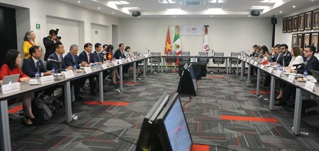 Promueven Vietnam y Mexico cooperacion economica hinh anh 1