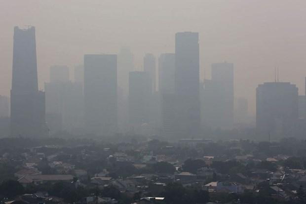 Proyectan en Indonesia reducir con lluvia artificial la contaminacion atmosferica de la capital hinh anh 1