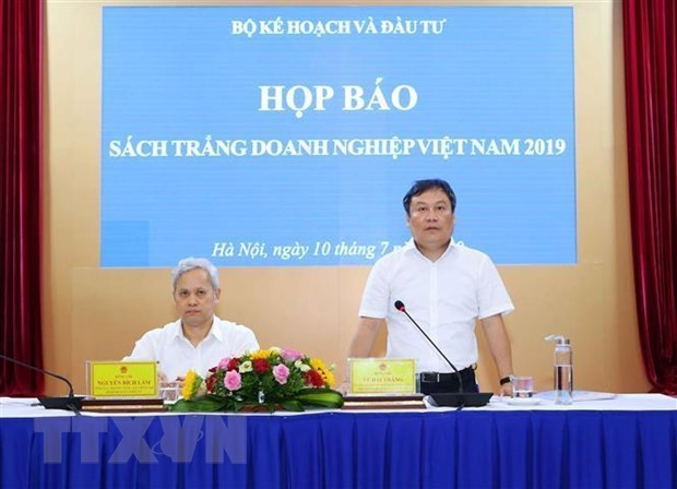 Publican Libro Blanco sobre Empresas de Vietnam 2019 hinh anh 1