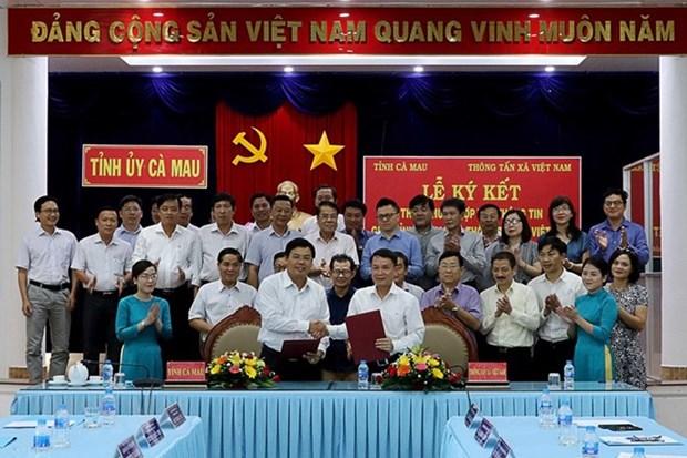 VNA promueve cooperacion de informacion con provincia de Ca Mau hinh anh 1