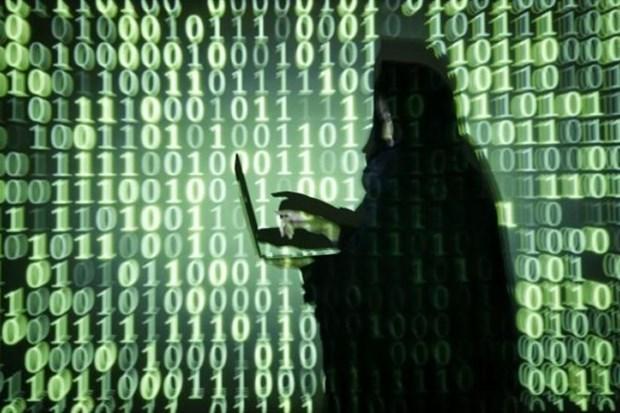 Aplica Singapur medidas drasticas para proteger los datos personales hinh anh 1