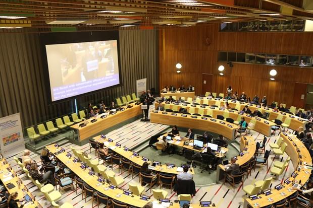 Comparte Vietnam en la ONU experiencias de desarrollo sostenible hinh anh 1