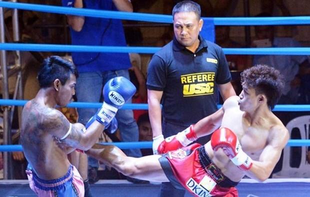 Compiten luchadores vietnamitas en Campeonato Mundial de Muay Thai en Tailandia hinh anh 1