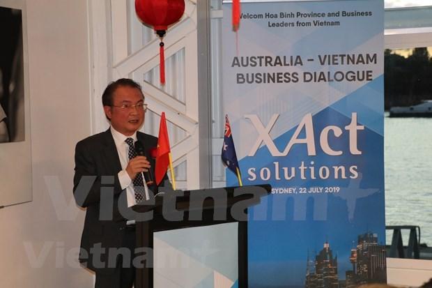 Expresa embajador de Vietnam en Australia optimismo sobre futuro de los nexos economicos bilaterales hinh anh 1