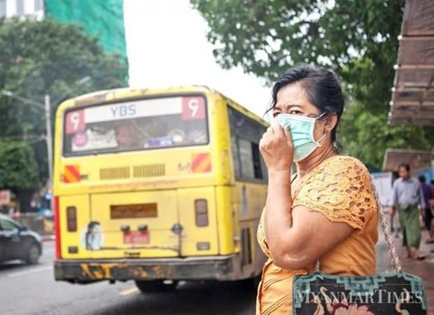 Aumentan a 71 las muertes por influenza A(H1N1) en Myanmar hinh anh 1
